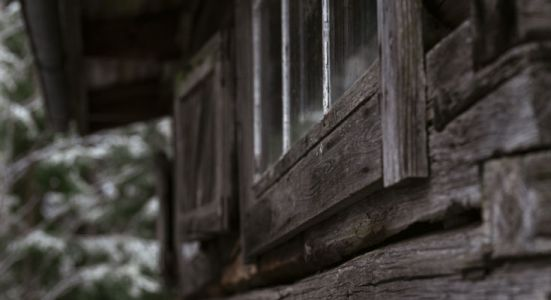 forest_cabin_window